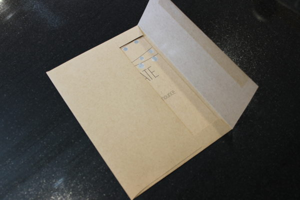 the_taming_of_the_shrew_mailer_envelope_open_patientrockdotcom